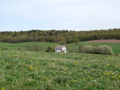 Farm on Jim Thorpe